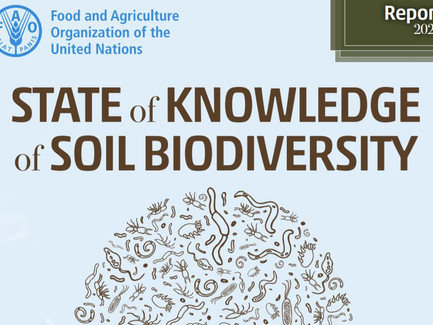 Status på jordens biodiversitet. Ny rapport fra FAO