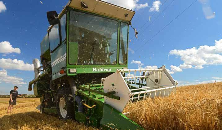 Forsøgsmejetærskeren er i fuld gang med at høste vårbyg i parcellerne ved Peter Juul Eggersgaard.