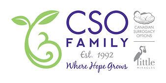 CSO Logo - Horizontal Colour_HighRes.jpg
