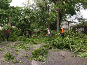 Strong Winds in Winona Lake