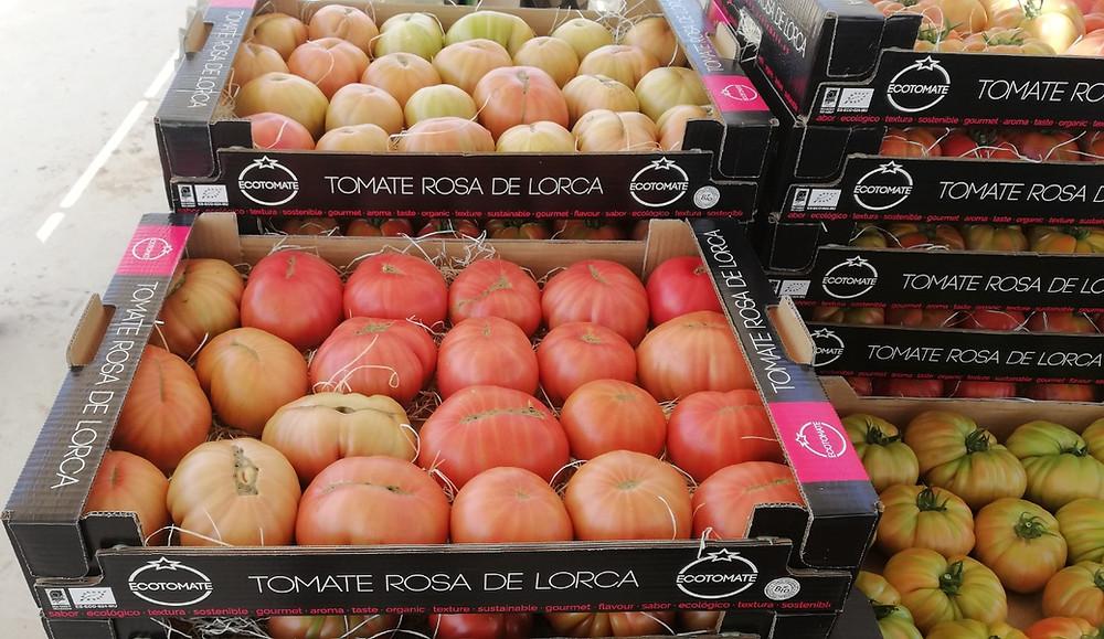 Cajas Tomate Rosa de Lorca