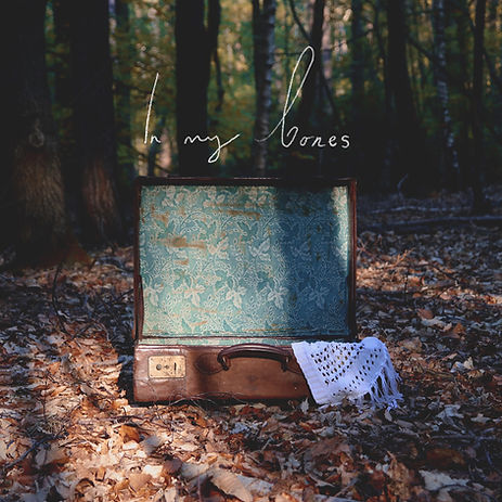 In My Bones Cover Artwork Ilona Mahieu Suitcase Forest