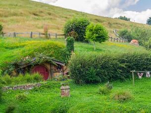 79% of hobbits dangerously underinsured