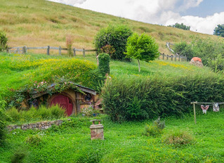 79% of hobbits dangerously underinsured
