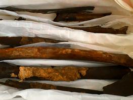 Berømte vikinge-knogler (gen)fundet