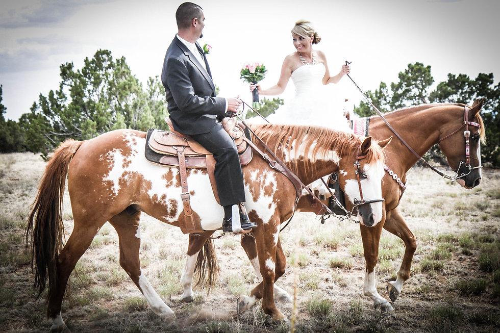 New Mexico weddig photography, horses