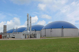 biocng-plant-500x500.jpg