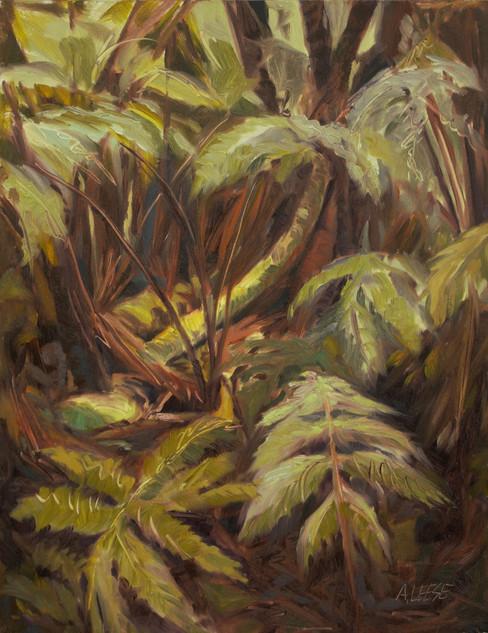 Niaulani Rainforest