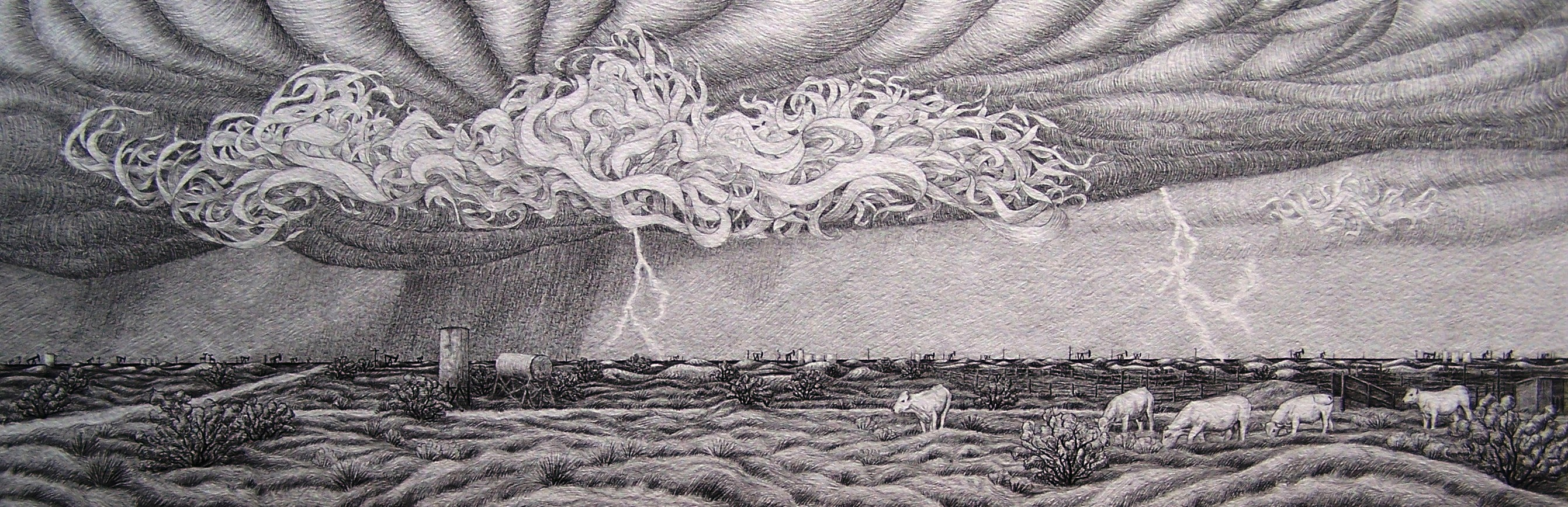 """Charlois Bulls and Storm Clouds"""