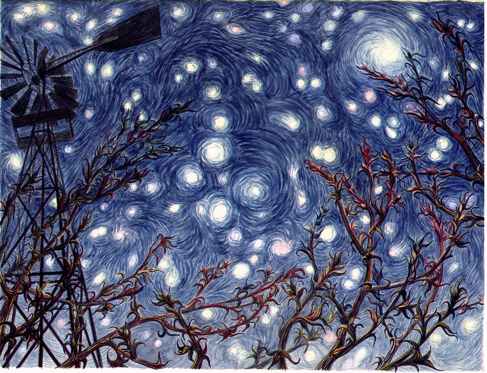 """West Texas Starry Night"""