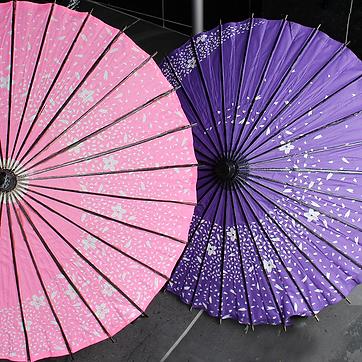 日傘.png