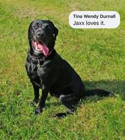 Tina Wendy Durnall
