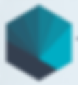 TIAS Shell Logo.png