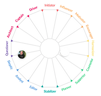 NM Architype Wheel.png