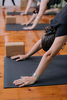 yoganess_studio-53.jpg