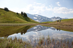 Wanderung Wannensee