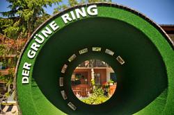 der_grüne_Ring