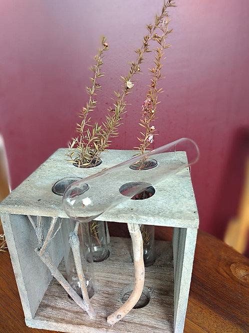 Vasos em vidro com suporte em madeira