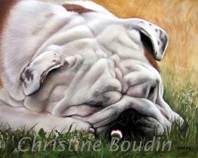 Bulldog pastel 65 x 50 par l'artiste Christine Boudin