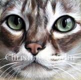 Toile de chat par l'artiste Christine Boudin