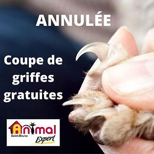 coupe de griffes gratuite à l'animalerie