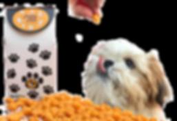 Pop Crocs, le pop corn pour chien