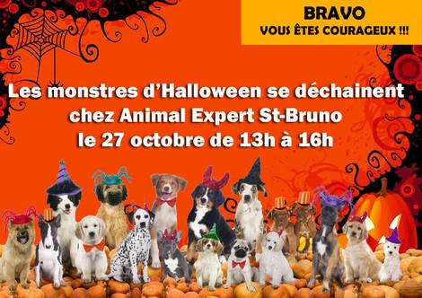 Événement Halloween - 27 octobre 2018