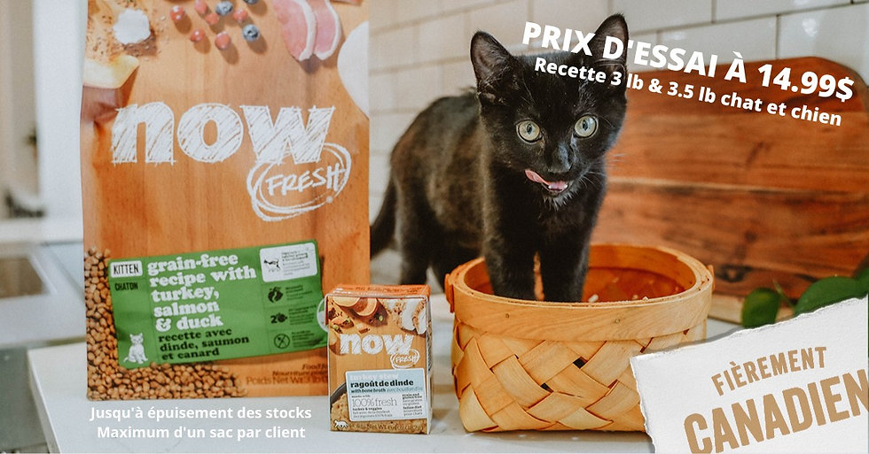 alimentation chat now