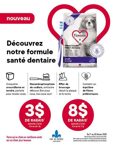 santé dentaire de votre chien avec 1st Choice