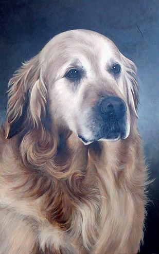 Golden 65 x 50 peinture.jpg