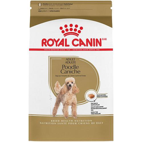 Royal Canin Caniche Adulte