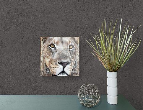 Mokup Lion  - Christine Boudin artiste peintre animalier