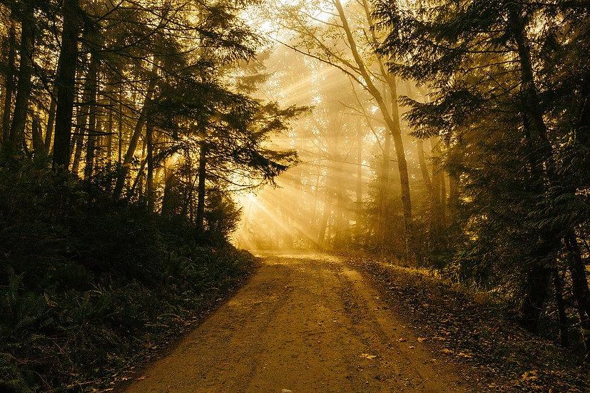 Méditation, le rituel de la terre