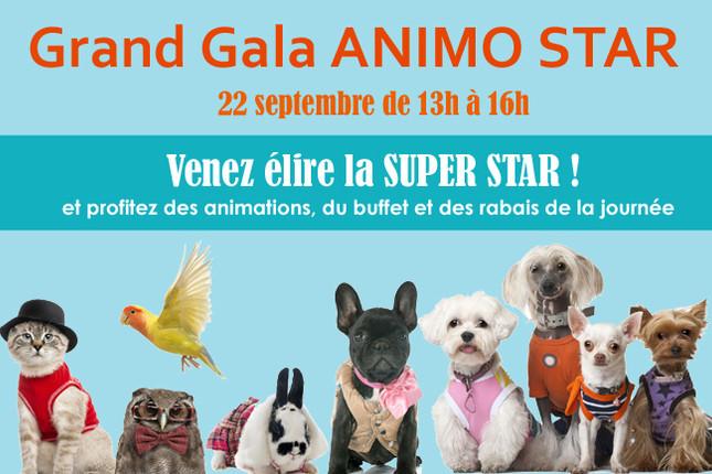 Événement Grand Gala Animo Star - 22 septembre 2018