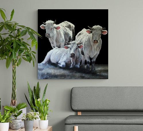 Mokup Les 3 grâces  - Christine Boudin art animalier