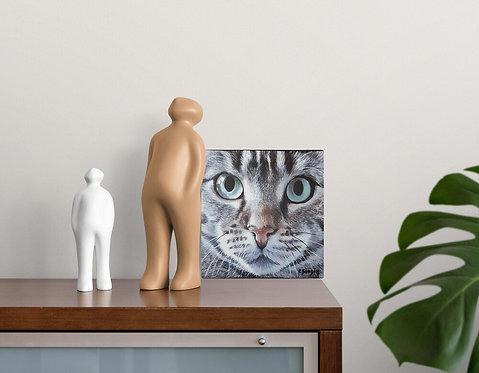 Mokup Chat Européen  - Christine Boudin art animalier