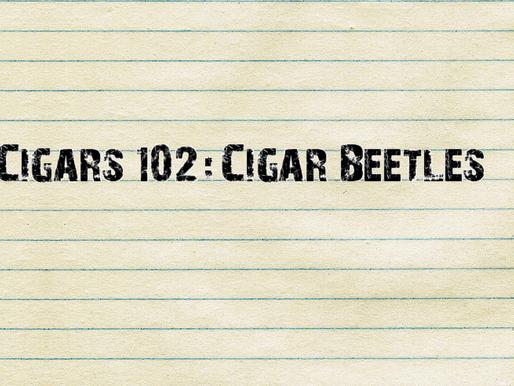 Cigars 102: Cigar Beetles