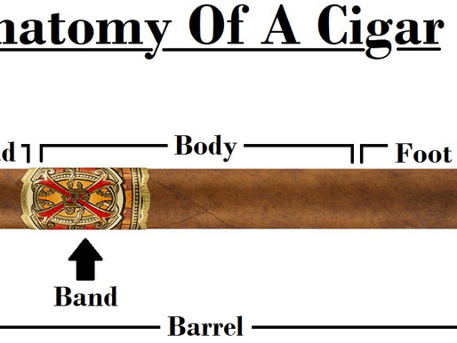 The Anatomy Of A Cigar (Visual)