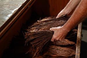The Art Of Cigar Blending - At A Glance