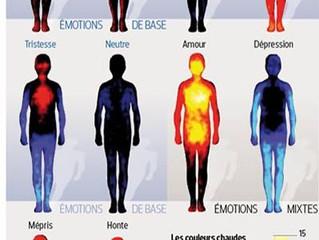 Quand le corps parle de nos émotions.