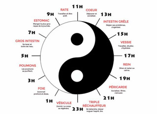 L'Horloge biologique selon la médecine chinoise