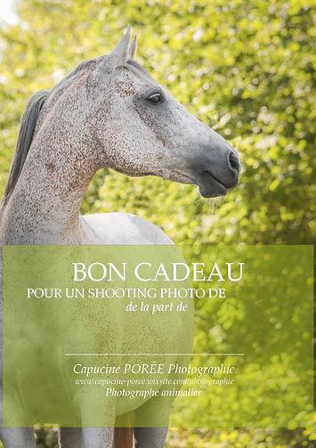 Carte Cadeau Photographe Chevaux Bordeaux