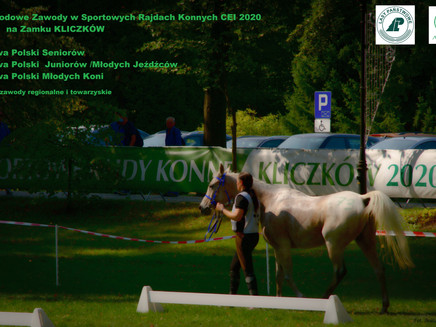 O duchu setnika, niewiernej białogłowie, cmentarzu dla koni i zawodach rajdowych….