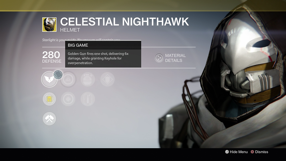 Celestial_Nighthawk_close