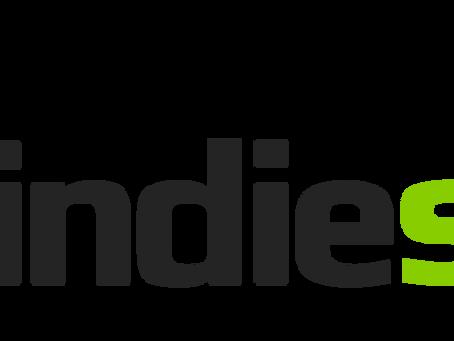 indie box puts foot mouth indie socks