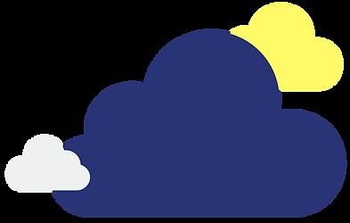 Gecko Cloud Solutions Branding