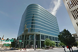 Jungle Law Criminal and Employment Law Firm St. Louis Office