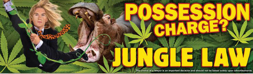 Hippo Possession Charge BB.jpeg