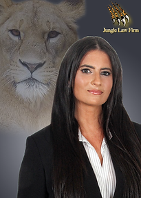 Lauren Sierra of Jungle Law in Kansas City