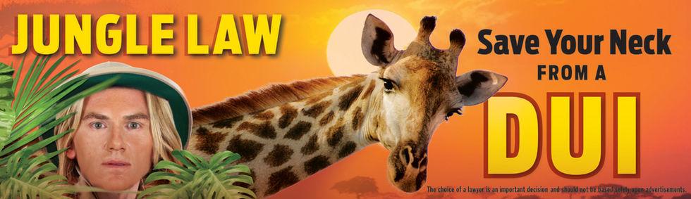 9-18_DUI_ USED Giraffe_Rev1 (dragged).jp